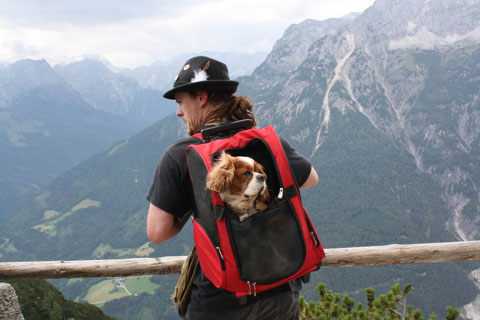 Hiking in Werfer, Austria; photo by Susan Farewell