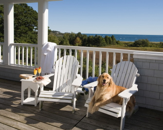 dog-friendly hotels in maine