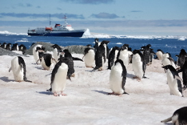 student travel in Antartica